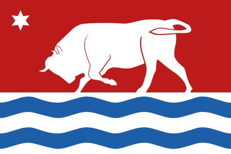 Bull Flag Design 3 variant A