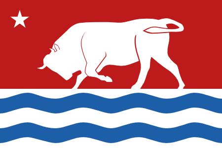 Bull Flag Design 3