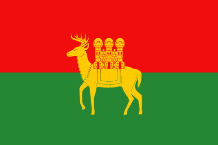 Flag of Coventry Deer and Castle