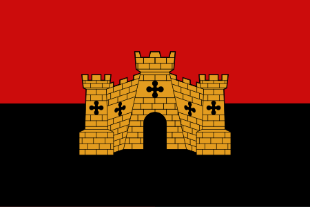 Flag of Exeter Arms Horizontal